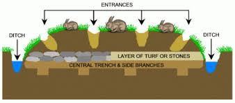 Rabbit Pillow Mound Diagram