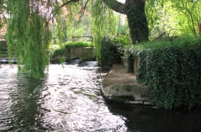 Taverham (River)