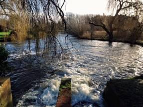 Taverham (Weir)