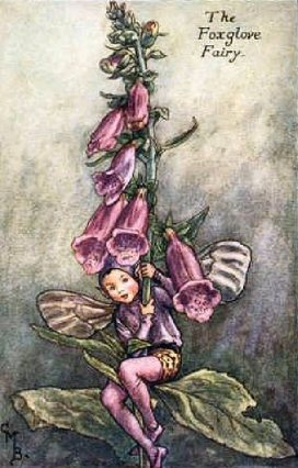 Foxgloves Fey 2
