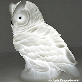 Luminous Owl (by Jumia Kenya- Generic)