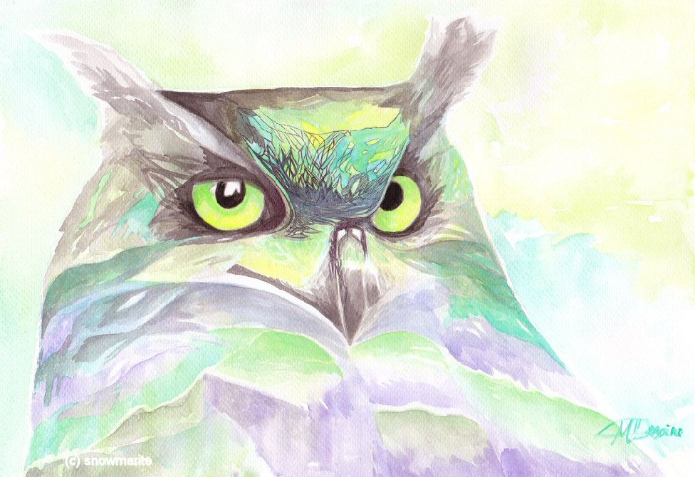 A Ghostly Tale: Hellesdon's Luminous Owl!