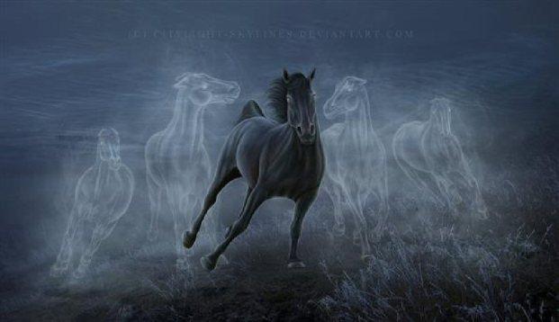 Phantom Horses2