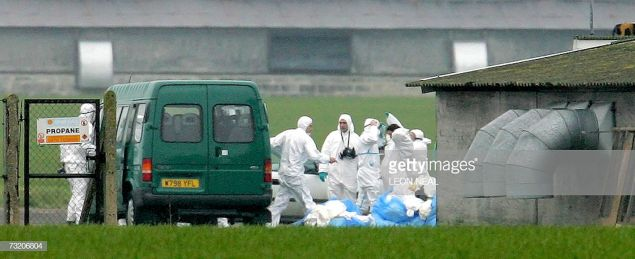 Bernard Matthews (bird flu)2