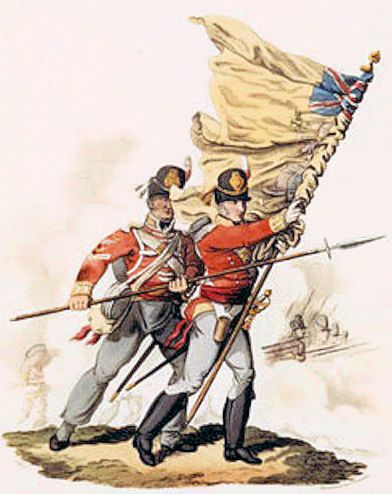 Norfolk Militia (East Norfolk Colours)