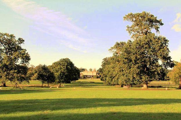 Norfolk Militia (Gunton Park)