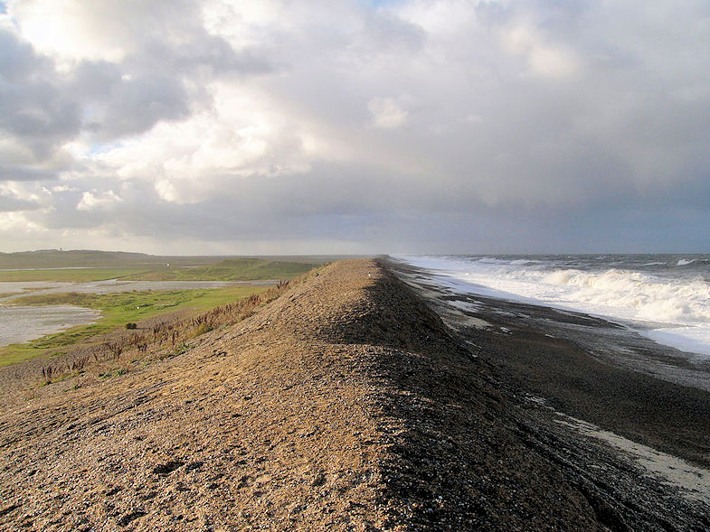 Shuck (Beach - Stacey. Peak-Media)1