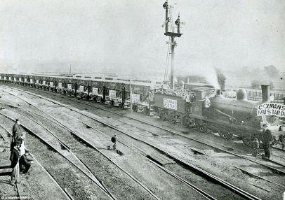 colmans (goods train 1896)