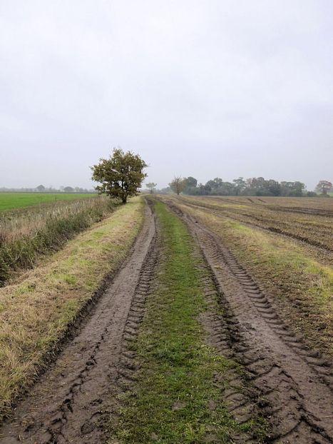 Scole Railway (lost-scole-railway-line)2
