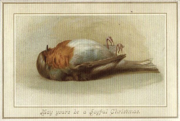 Christmas-Dead-Robin