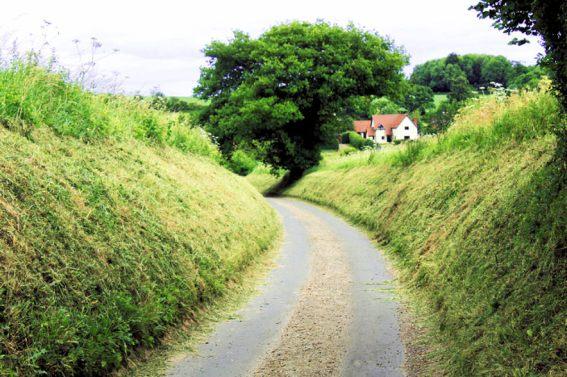 Shotesham (Hollow Lane)12