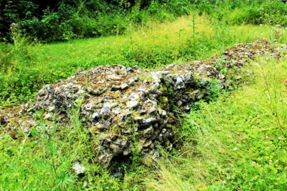 Shotesham (St Botolph Ruins)11