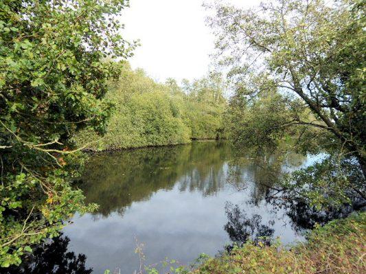 Felthorpe (Sparham Pools_Wikipedia)