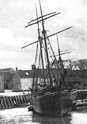 Minstrel (Blakeney 1900)