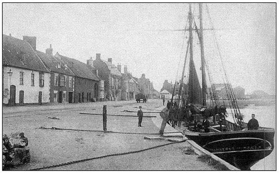 Minstrel (Wells 1895)