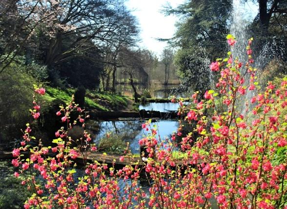 Brundall Gardens (Lake House)
