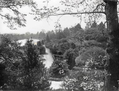 Brundall Gardens (Paths_Justin Franklin_Pinterest)