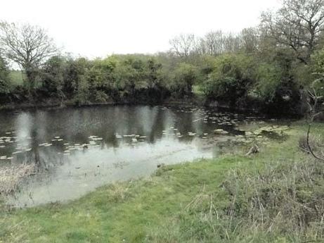 Sheringham (Fishing Lake)