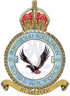 Spitfire X4593 (266 Squadron)