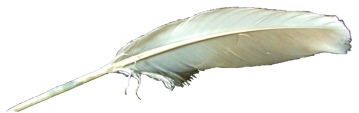 Mucky Porter (Goose Feather)1