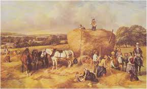 East Anglian Agricultural Gangs of the Past.