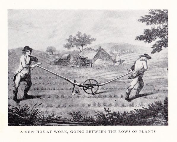 Gooderham (FARMING)