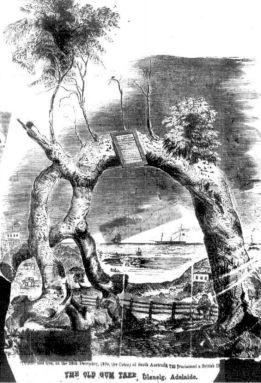 John Skipper (OLd Oak Tree)